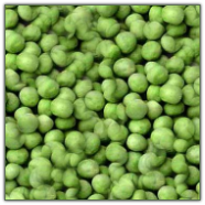 Freeze Dried Garden Peas #10 can