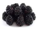Freeze Dried Whole Blackberries #2.5 can