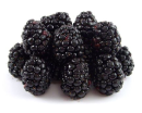 Freeze Dried Whole Blackberries #10 can